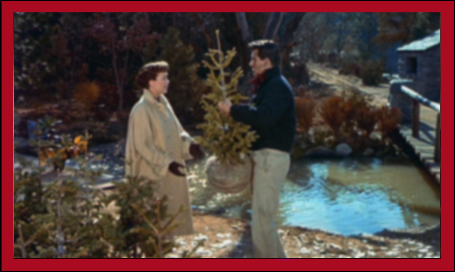all that heaven allows douglas sirk 3