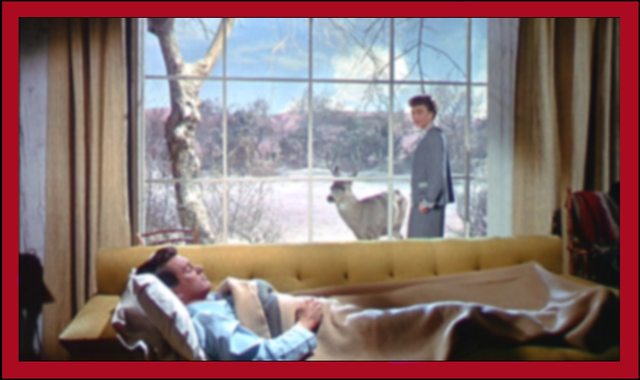all that heaven allows douglas sirk1